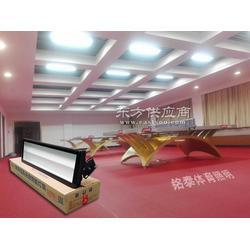 乒乓球配什么灯,乒乓球室照明新型灯具,乒乓球灯光配置哪种好图片