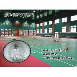 一个羽毛球场地怎么布灯,一个羽毛球场装多少灯好图片