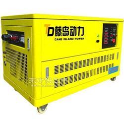 藤岛燃气发电机12千瓦静音燃气发电机TD12GF-T图片