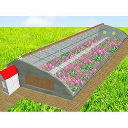 温室大棚,建发温室建设(在线咨询),郴州温室大棚图片