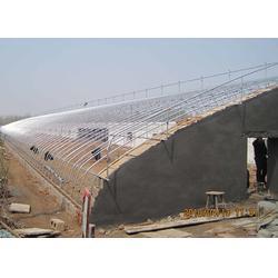 乌鲁木齐日光温室,青州建发温室建设厂,日光温室施工图片