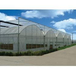 塑料连栋温室,丽江连栋温室,青州建发温室建设(查看)图片
