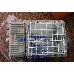 BAT53-400W防水防腐射灯带镇流器400W防水LED灯图片