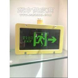 安全出口指示燈BYY-9W/20W過電保護功能電子發光板圖片