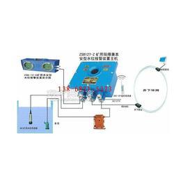 ZSB127高低水位报警装置DC12V水位传感探头DC13vLED图片