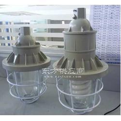 250W-BAD51防水防尘防爆灯BAD51-L250W-XZ防爆灯图片