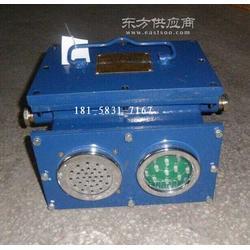 KXB-2A高低水位报警器红绿灯光显示AC127V水位探头图片