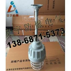 HRD81 防暴紧凑型节能灯-ⅡCT6级防爆灯壳体图片
