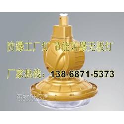 节能防水防尘防腐灯吸壁式SBF6101-YQL50C 220V 50W电磁感应无极灯光源图片