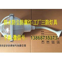 供应FAD-W50b1工厂用壁装防水防尘无极灯 50W/IP65无极灯图片
