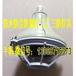 供应FAD-L-J150fZ 法兰式配灯杆2米 防水防尘防腐灯图片