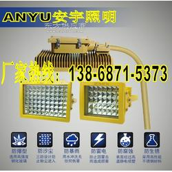40W 60W 25W锅炉房防爆灯BC9302 BC9501 弯杆式LED防爆投光灯图片