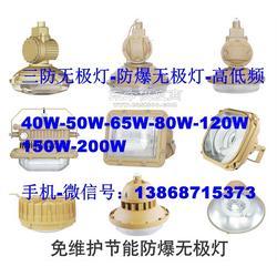 65W 220V电磁感应无极灯SBF6106-YQL65防水防尘防腐吸顶灯图片