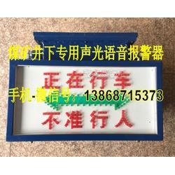 信号已发严禁入罐语音报警装置-KXB127-AC127-AC36V声光语音报警器图片