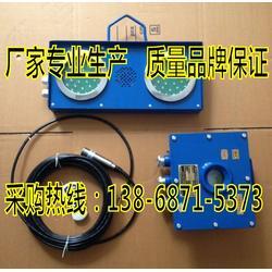 煤矿用水位声光高低报警装置ZSB127-Z图片