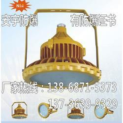 LED防爆灯 GB8052 220V 100W图片