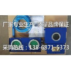 煤矿高低水位报警 煤仓水位声光报警ZSB127-KXJ127矿用水位报警器装置图片