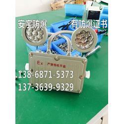 BAJ52防爆应急灯 双头GCD803-YJ 2X3W AC220V