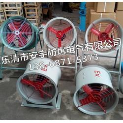 入口带防护网0.25KW防爆轴流风机BT35-11型NO.4图片