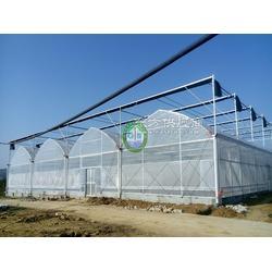 歌珊节能日光温室厂家电话 节能日光温室材料系统图片
