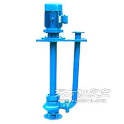 立式渣浆泵65QV-SP液下渣浆泵图片