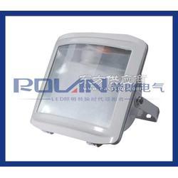 GT001-J42/42W节能荧光灯图片
