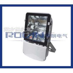 NTC9230防水防尘防震金卤灯250W图片