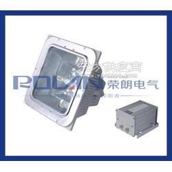 NFE9100应急棚顶灯厂家提供图片