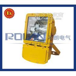 ZL8901-N400/400W防爆钠灯供应图片