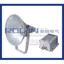 供应NFP250/NFP250投光灯 三防投光灯 行车灯图片