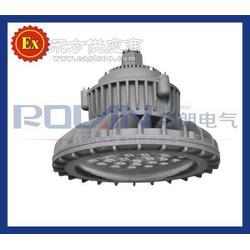 防爆高效节能LED投光灯HRT91-60W/80W/100W/120W功率图片