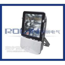 荣朗品牌NTC9230厂区照明投光灯图片