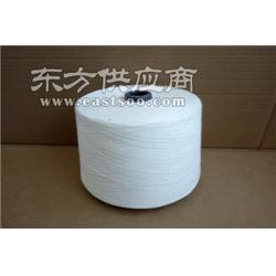 粘棉混纺纱40支50支关键词(318)图片