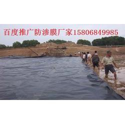 鱼池防渗膜多少钱,银川鱼池防渗膜,山东鱼池防渗膜厂家图片