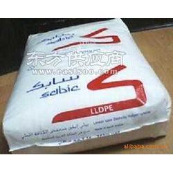 供应 LLDPE MG500026沙特SABIC图片