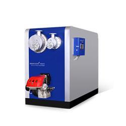 天燃气锅炉-威海吉美贸易(在线咨询)威海燃气锅炉