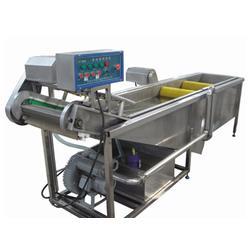 广西水果蔬菜清洗机、诸城博海机械、气泡式水果蔬菜清洗机图片
