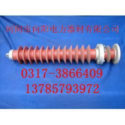 氧化锌避雷器,HY5WS-51/134,悬挂式氧化锌避雷器图片