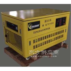 10KW永磁燃气发电机 TD10CNG图片