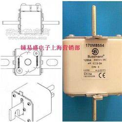 扬州现货原装美国BUSSMANN巴斯曼熔断器170M6067图片