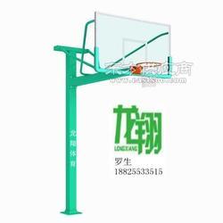 单臂T型篮球架LX-005图片
