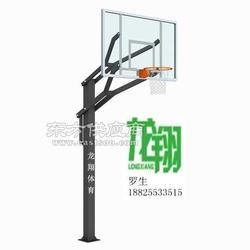 弹力休闲篮球架LX-008图片