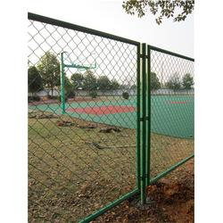 体育场围网、双边体育场围网、方琪金属丝网图片