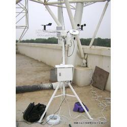 RYQ-3型光伏系统环境监测仪图片