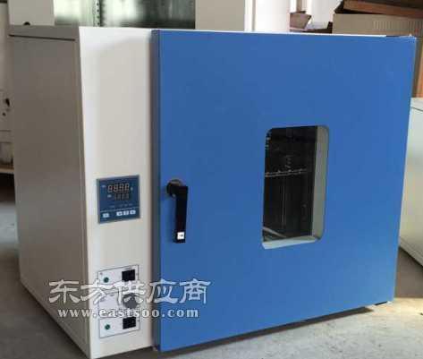 300度电热鼓风干燥箱DHG-9023B,鼓风烘箱图片