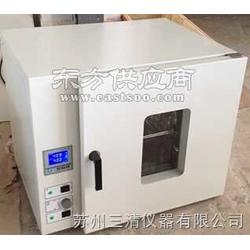 DHG-9140A恒温干燥箱鼓风干燥箱烘箱图片