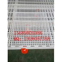 养鸡塑料平网,养殖塑料网,塑料平网图片