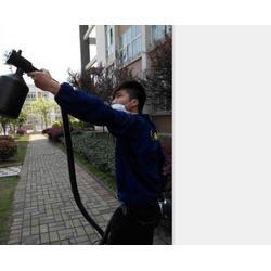 酒店杀虫灭鼠_保格利控虫(在线咨询)_贵溪市杀虫灭鼠图片