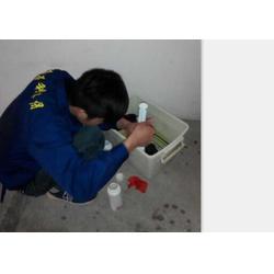 公司灭老鼠-进贤县灭老鼠-保格利控虫杀蚊蝇(查看)图片