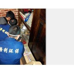 保格利控虫(图)|南昌灭除跳蚤|吉州区除跳蚤图片